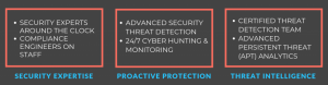 Cyber Guard Security Services